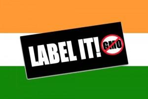 india-label-it-300x200